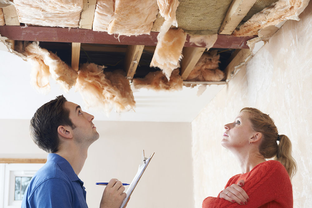 Free Property Damage Inspection